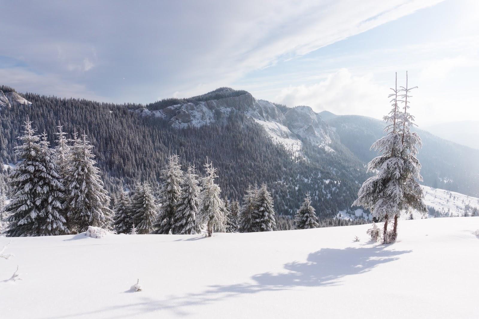 iarna-la-Pietrele-Albe-Vladeasa - Banda Rosie