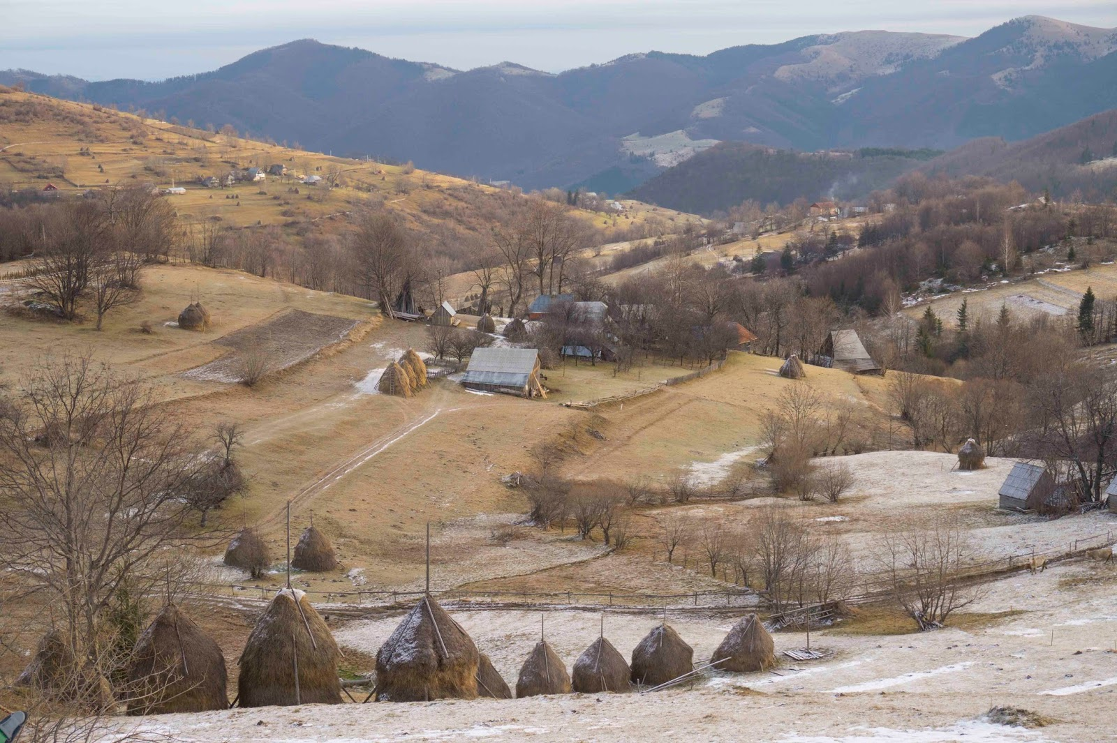 Cateva-gospodarii-ale-intinsului-sat-Rogojel - Banda Rosie