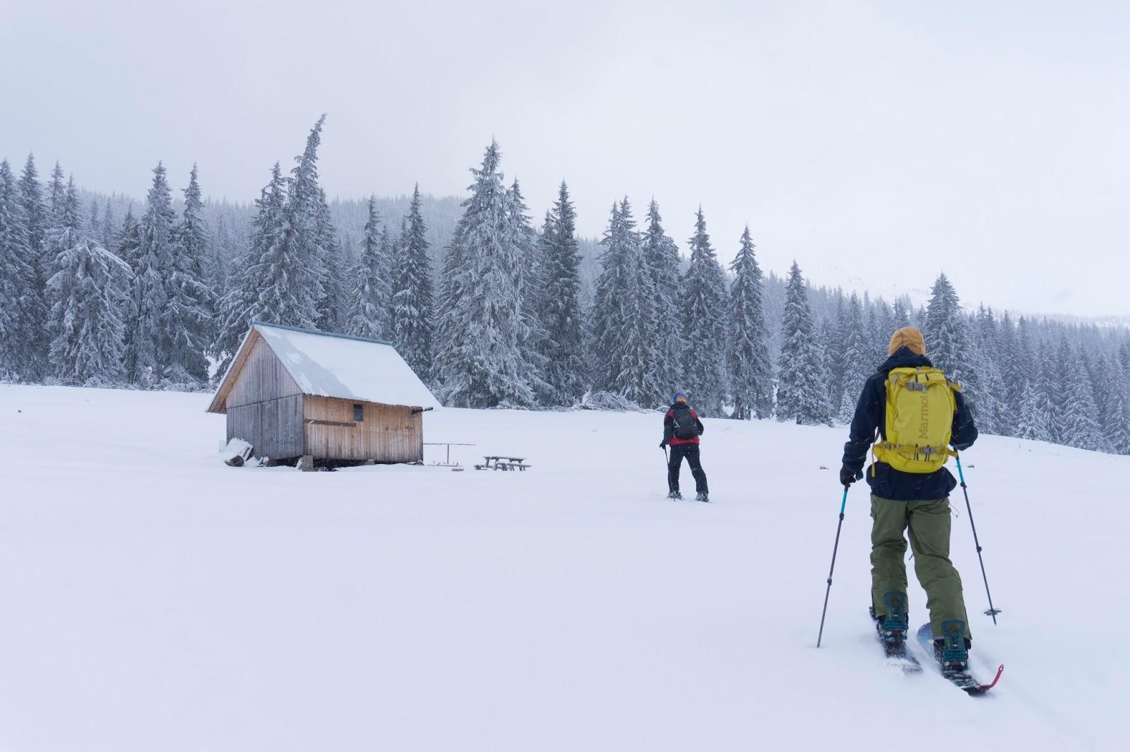 iarna-in-poiana-Faget-muntii-Vladeasa