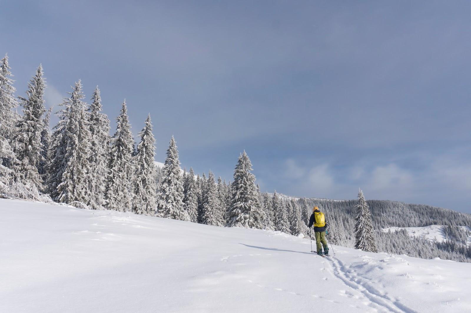 iarna-in-Vladeasa -  cover - Banda Rosie