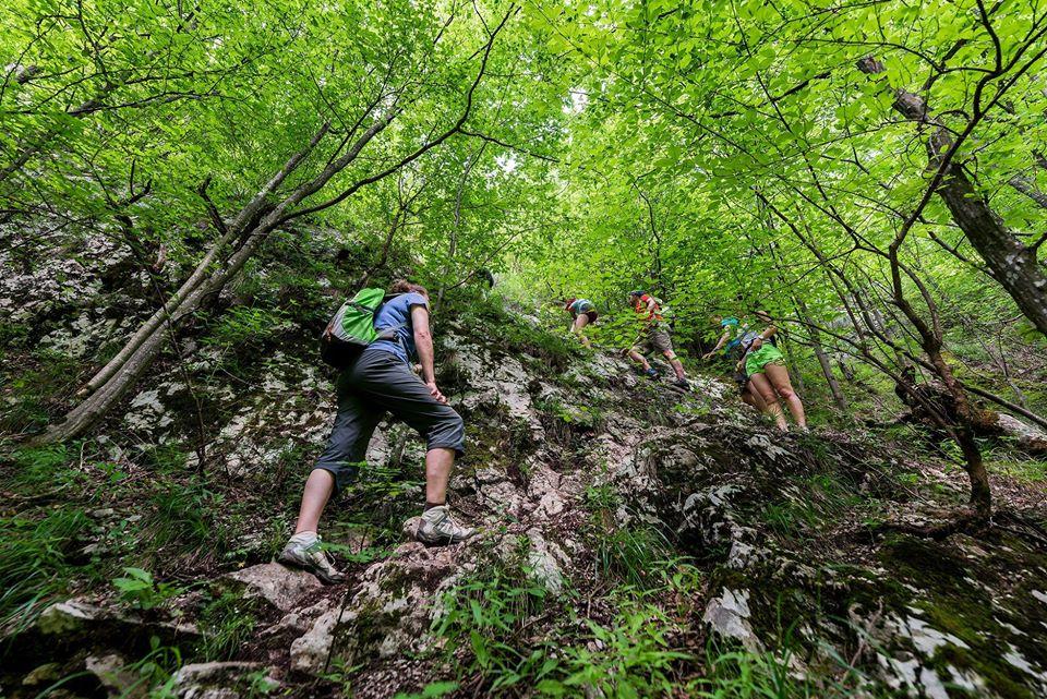1. Urcarea abruptă prin pădure
