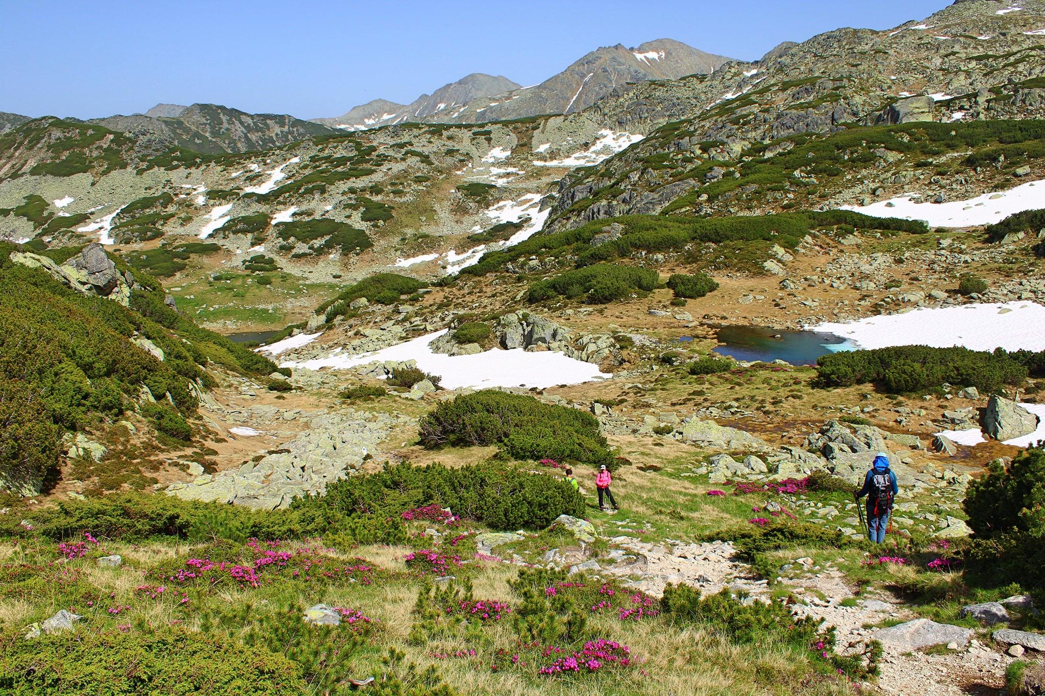 Valea şi Lacul Stânişoara - Sima Constantin