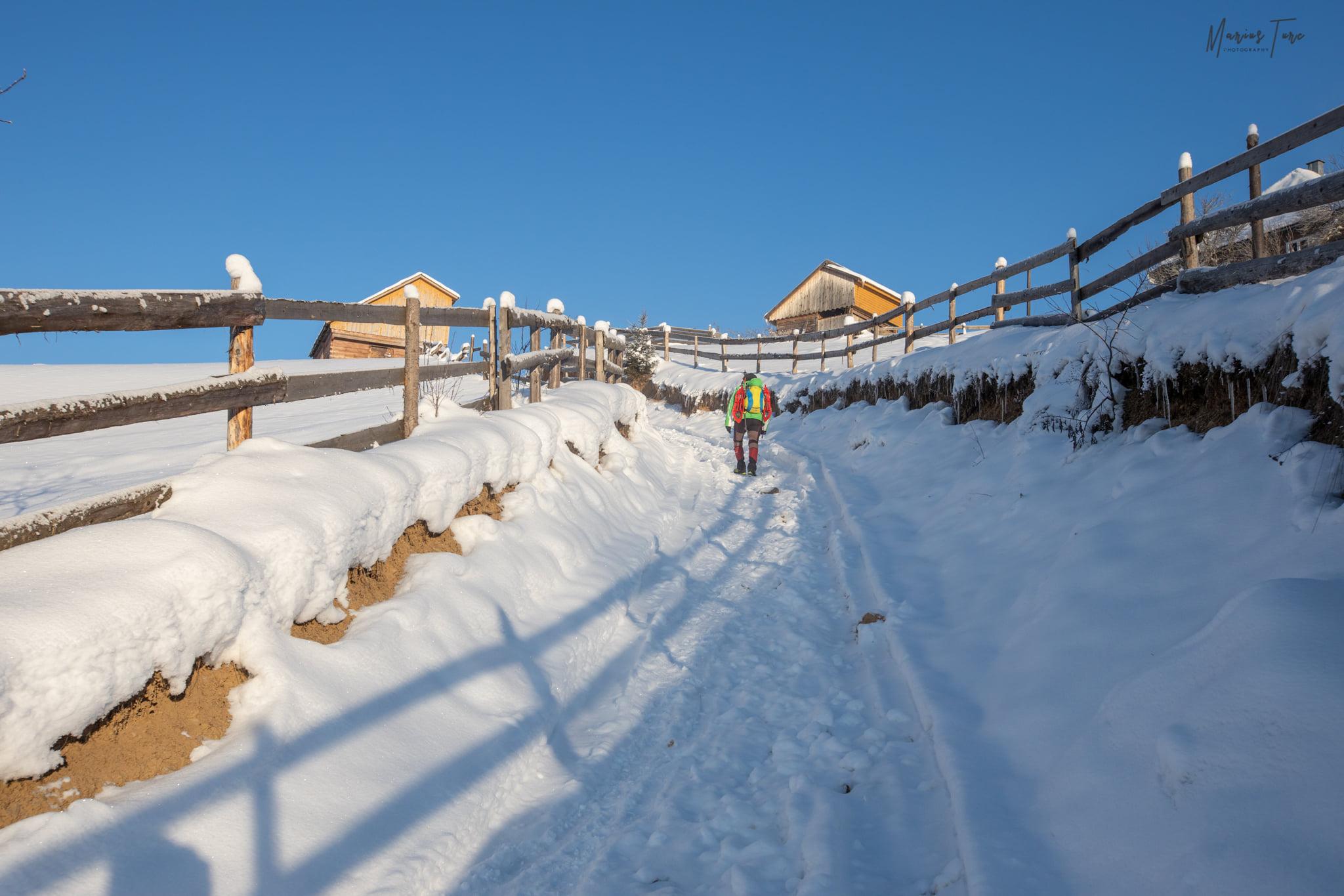 Un drum frumos printre gardurile motilor - Marius Turc