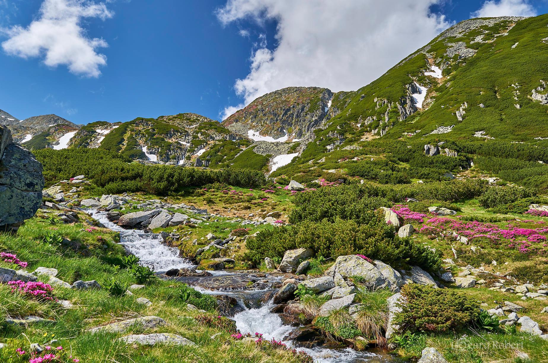 Coborâre pe Valea Rea - Robert Dogaru