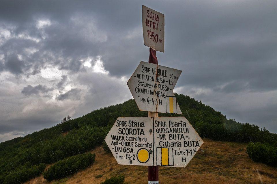 Intersectie de marcaje in Saua Iepei - Daniel Morar