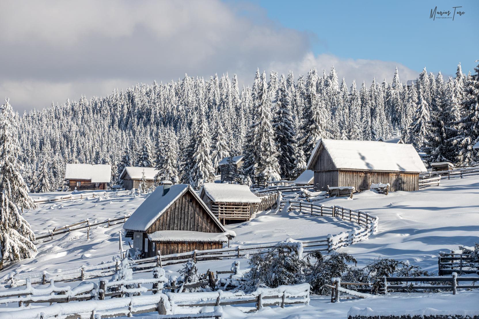 Ce frumusete iarna - Marius Turc