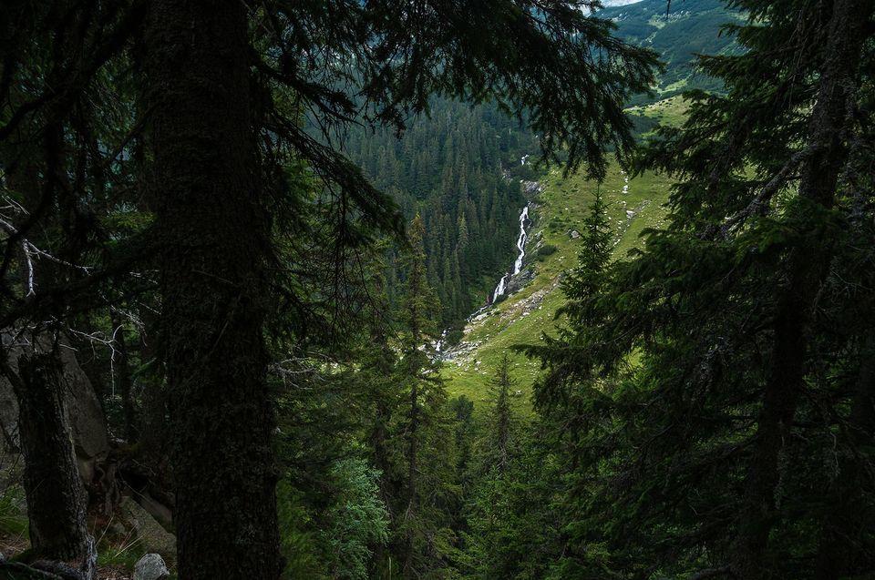 Cascada Ciumfu - Morar Daniel