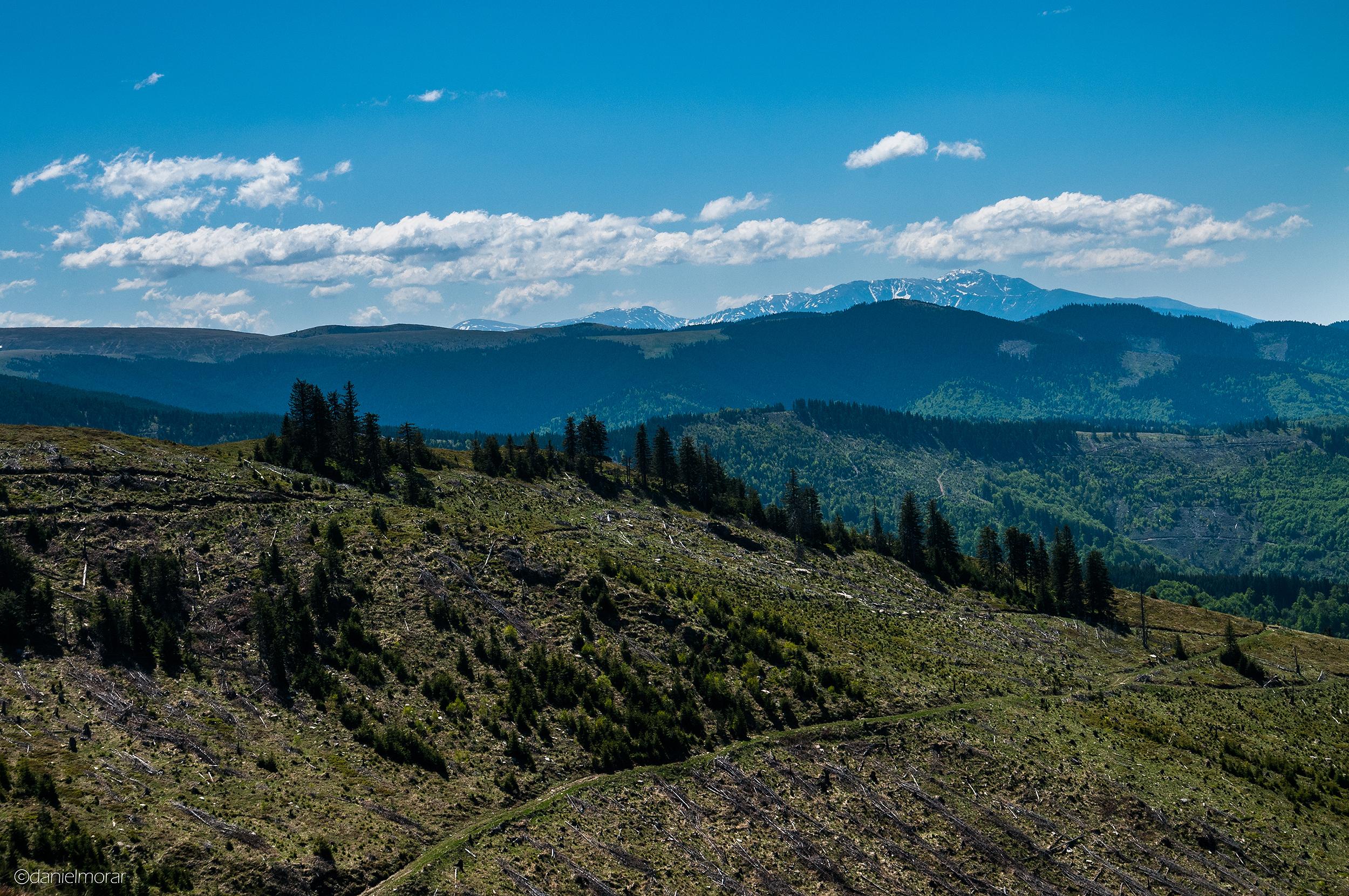 Munții Orăștiei