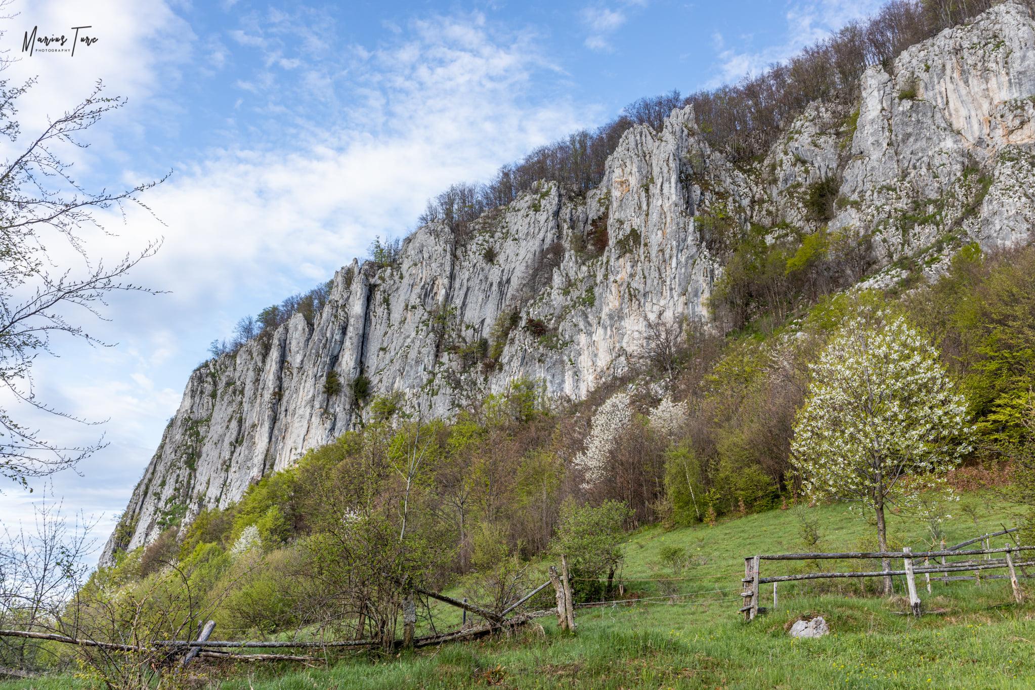 Abruptul Muntelui Vulcan - Marius Turc
