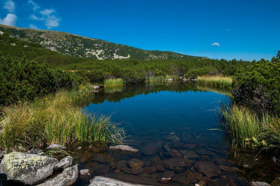 Iezer sub Lacul Galcescu - Morar Daniel