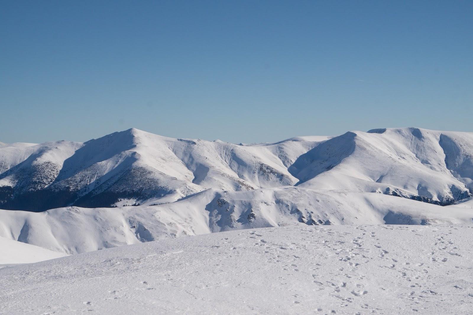 Vedere spre Vf. Gugu, muntii Godeanu - Alina Cirja
