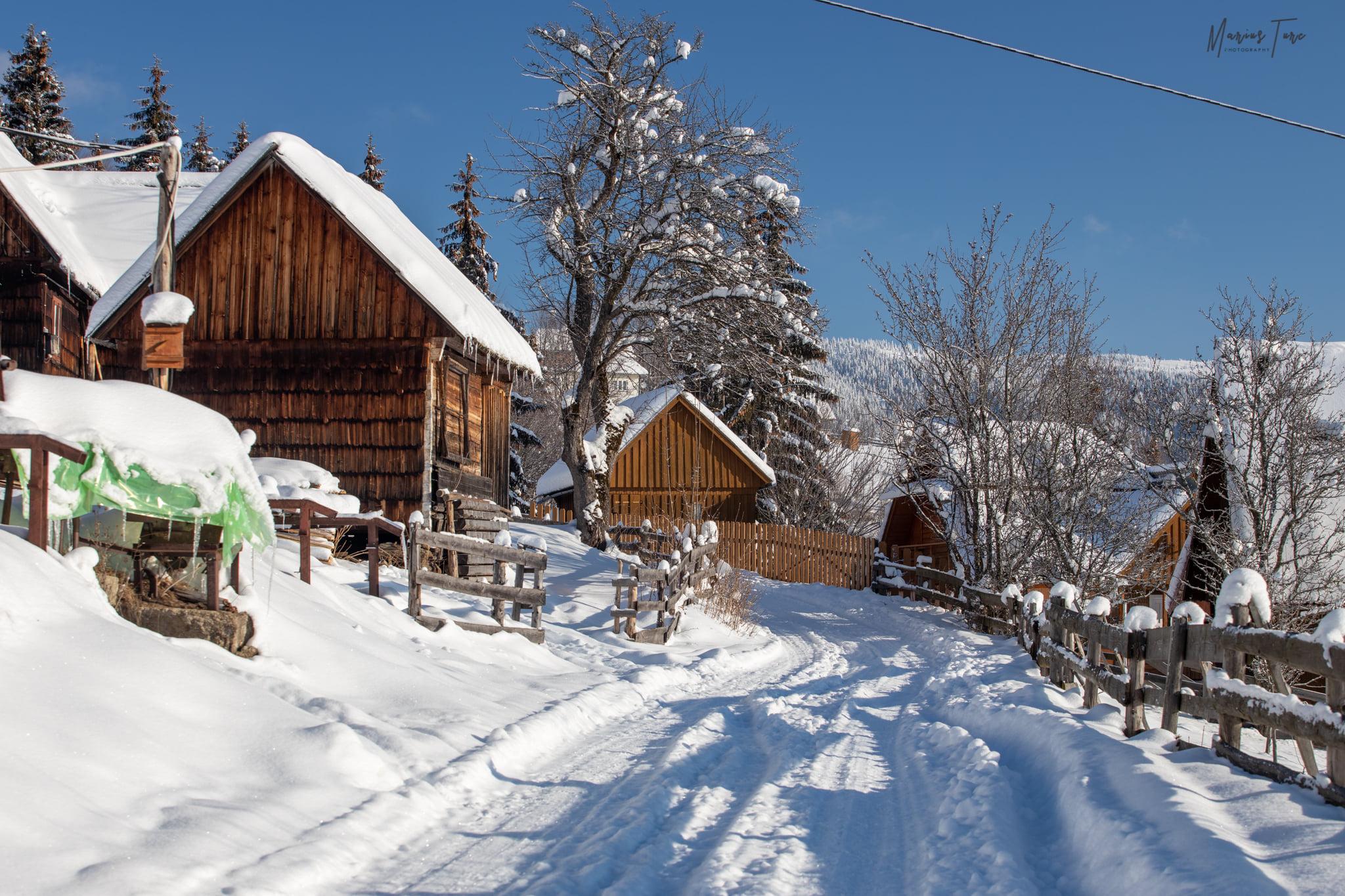 Printre case, pe ulita satului Trifesti - Mariu Turc