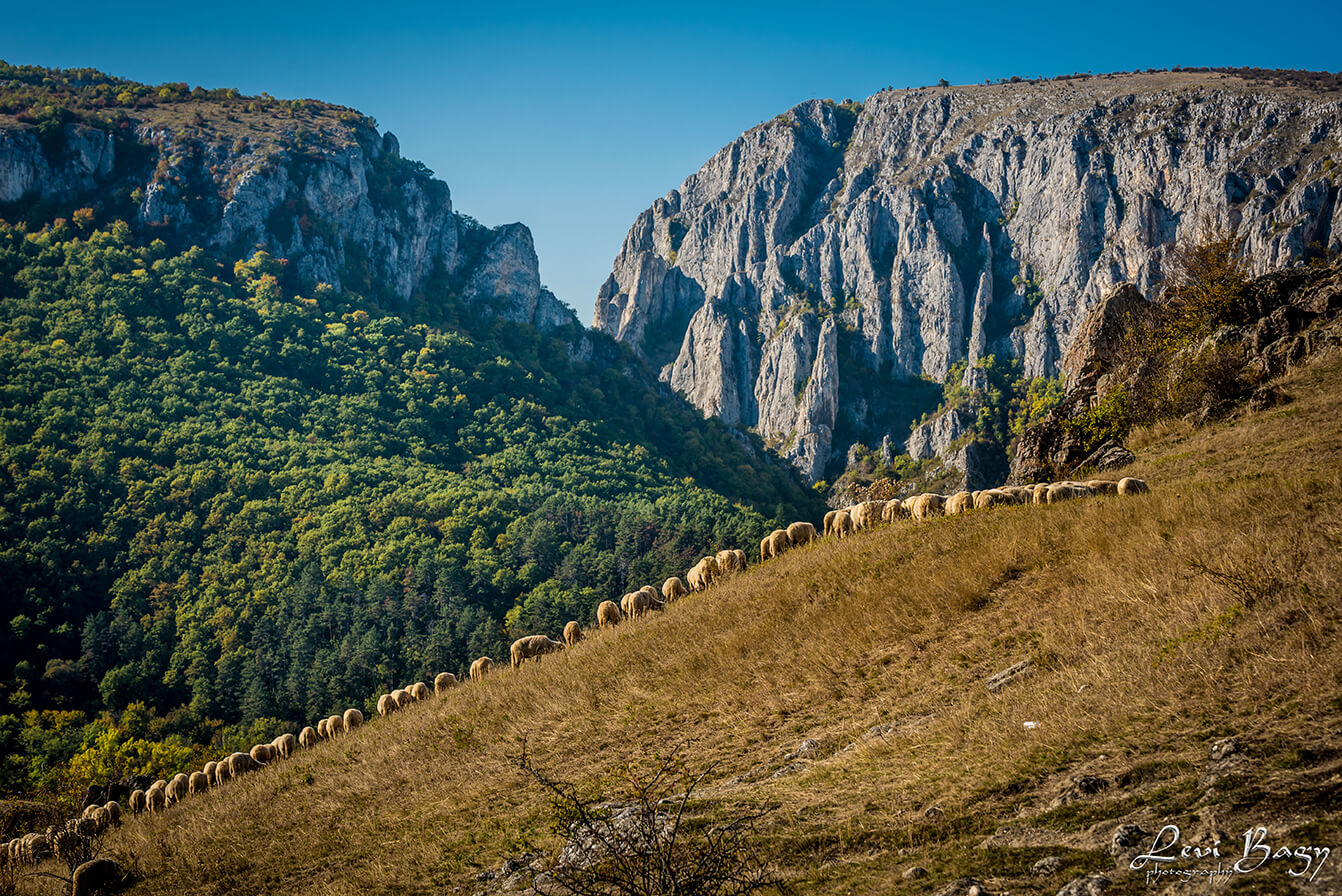 Cheile-Turzii-Levi-Bagy-Photography