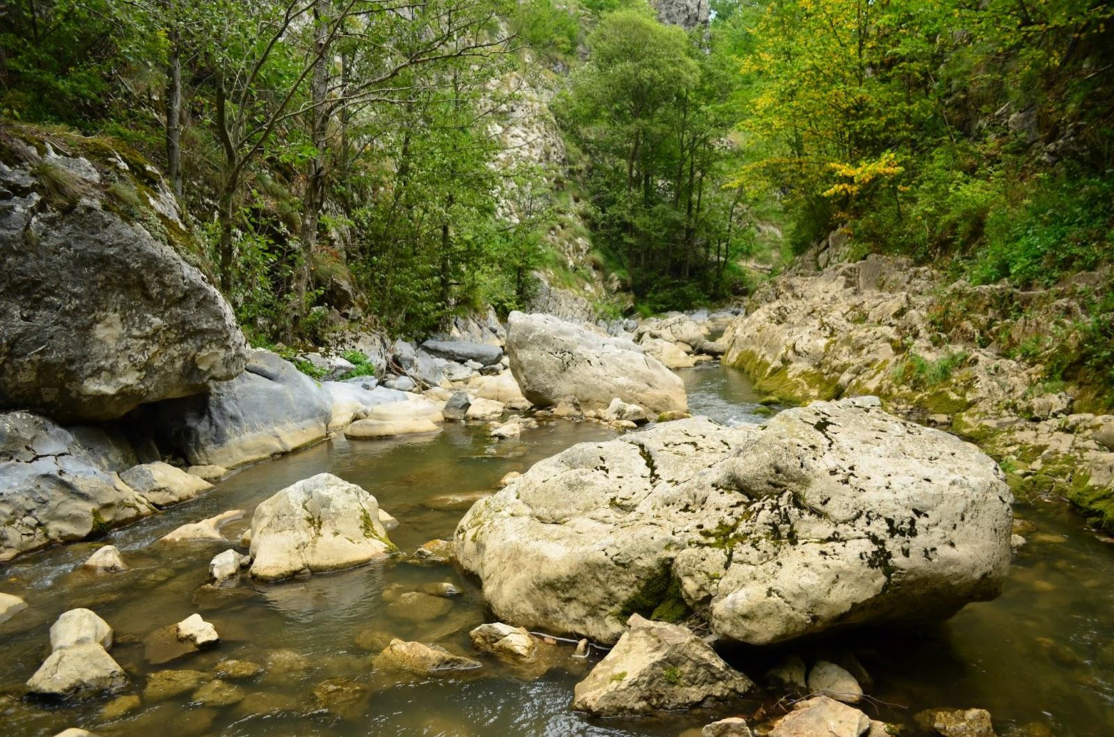 Cheile Rametului printre bolovani - Amazing Romania