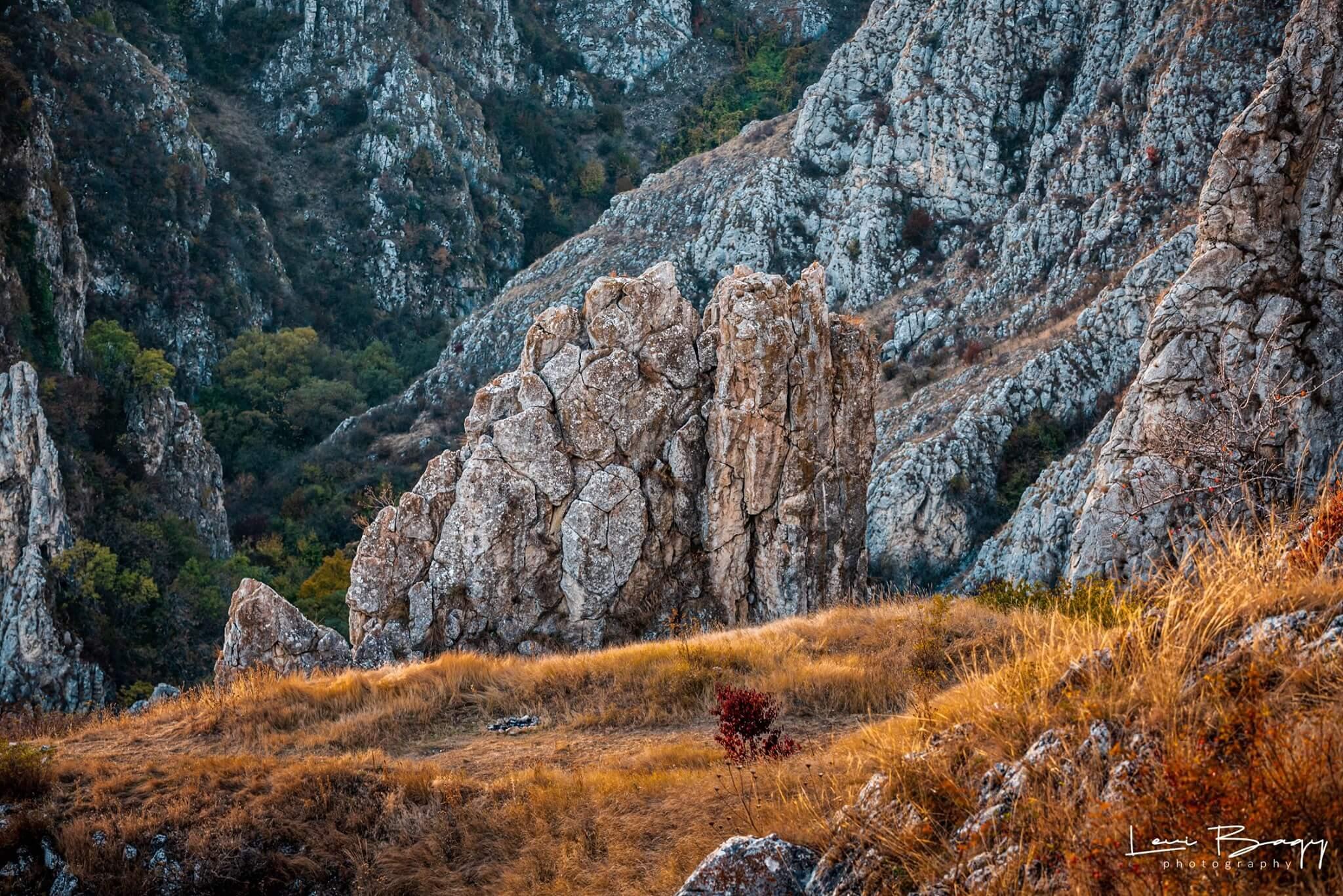Cheile Turului (Tureni) - Levi Bagy Photography