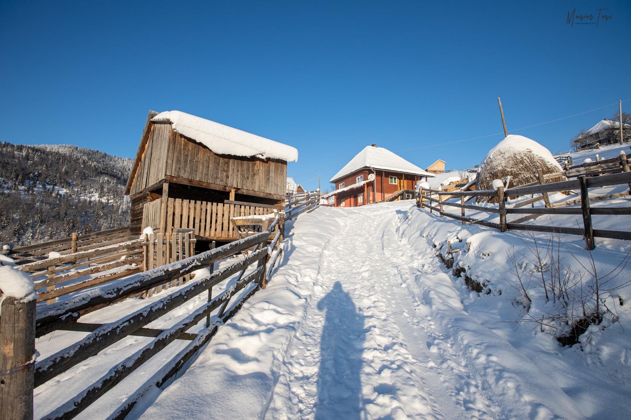 Continuam urcarea printre case- Marius Turc
