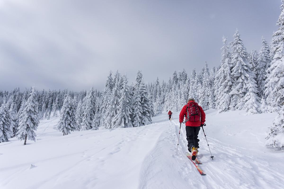 Inaintare schi de tura - Alina Cirja - Banda Rosie
