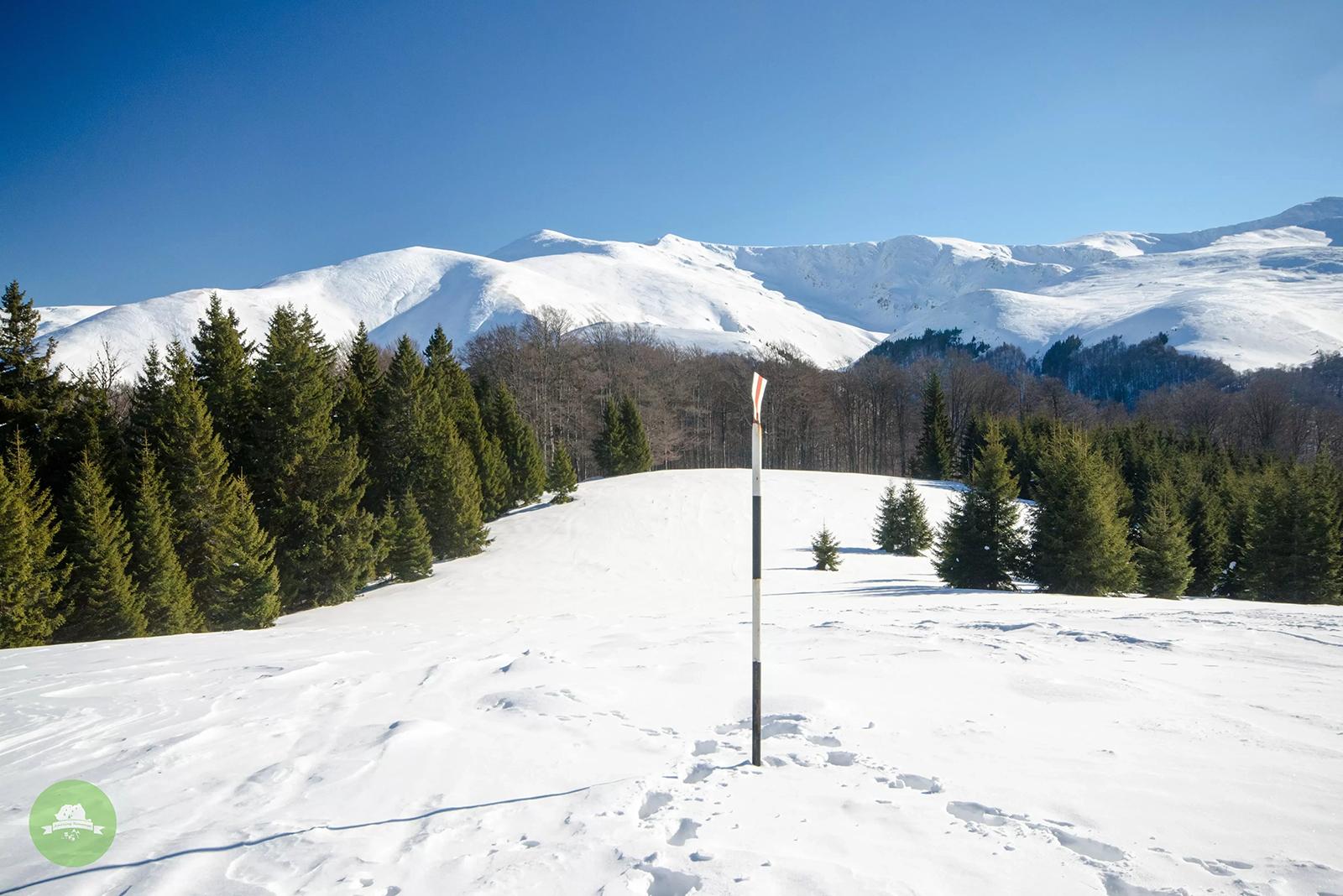 Creasta albă a Munților Țarcu - Amazing Romania