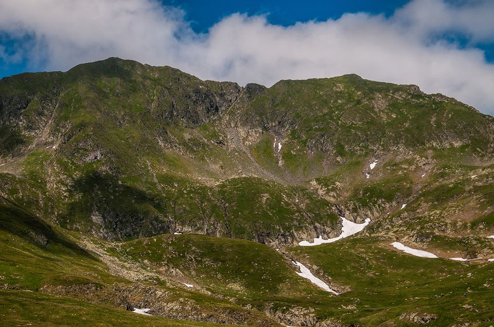 Culmea Moldoveanu - Vistea -  Morar Daniel