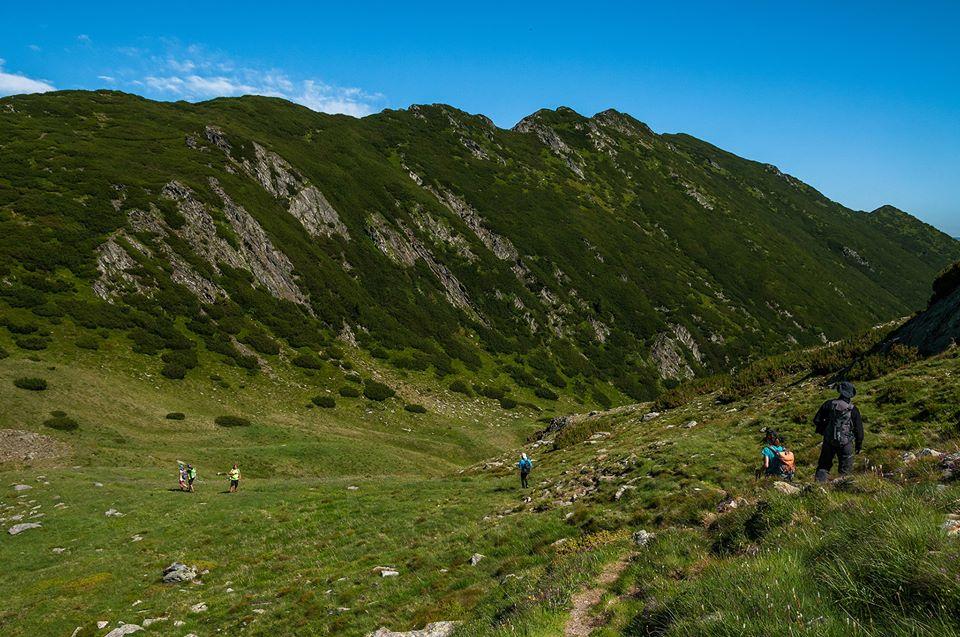 Curmatura Pojarnei spre Valea Zbuciumata -  Morar Daniel.jpg