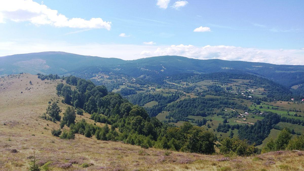 Dealul Bilii - deasupra Valea Vadului