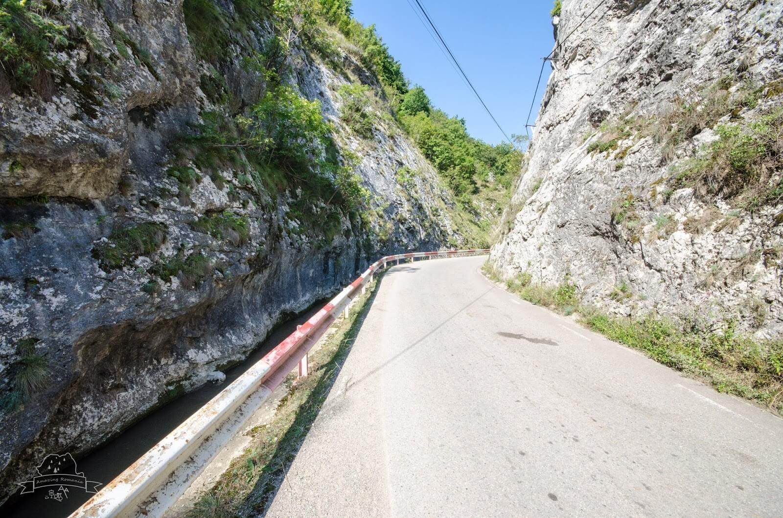 Drum auto Cheile Gălzii - Amazing Romania