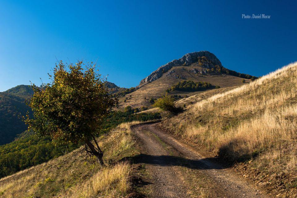 Drumeagul care urca la Piatra Craivii dinspre sud - Daniel Morar