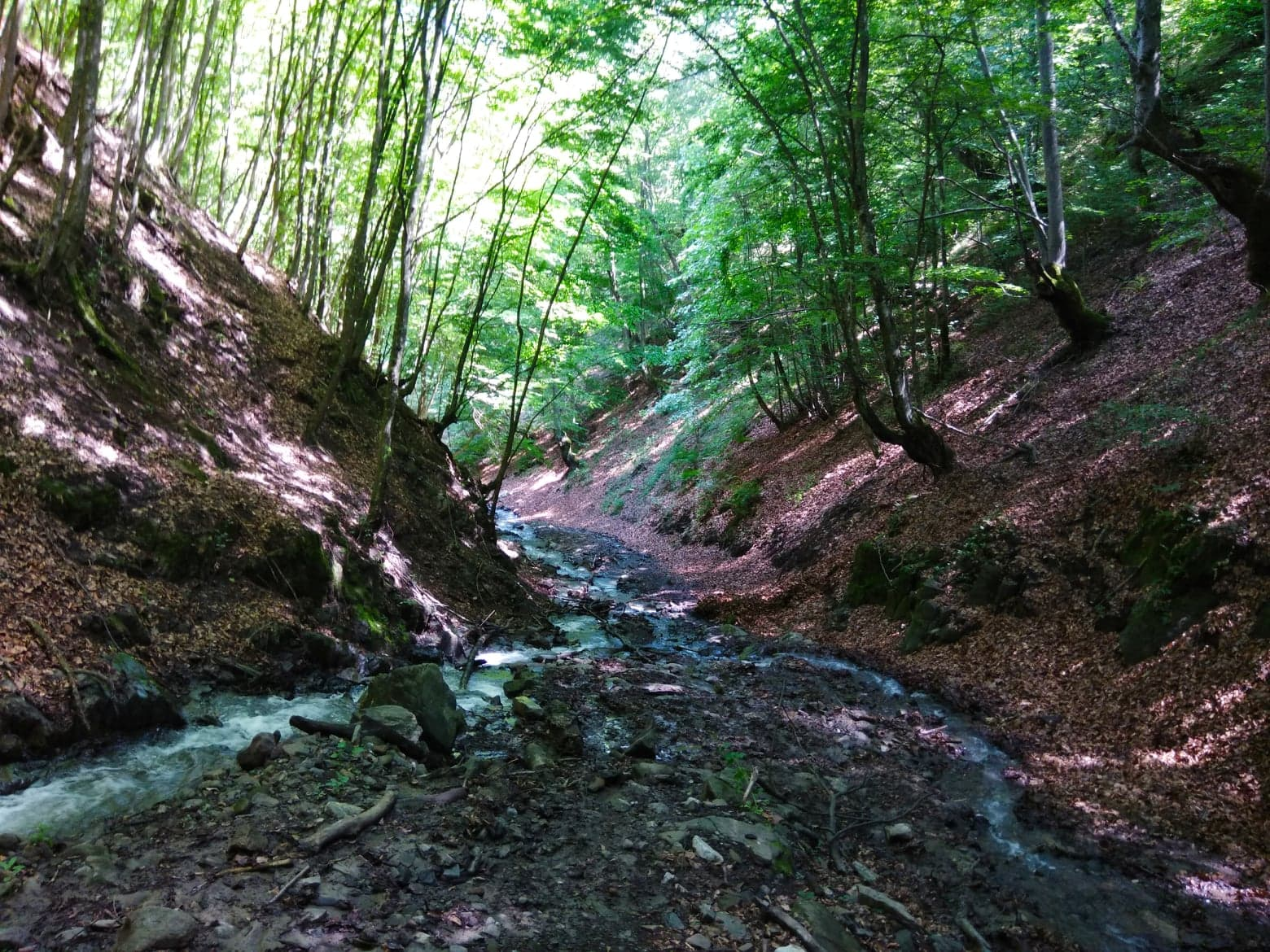 Drumul de pe Valea Bulzului - Manu Muntomanu