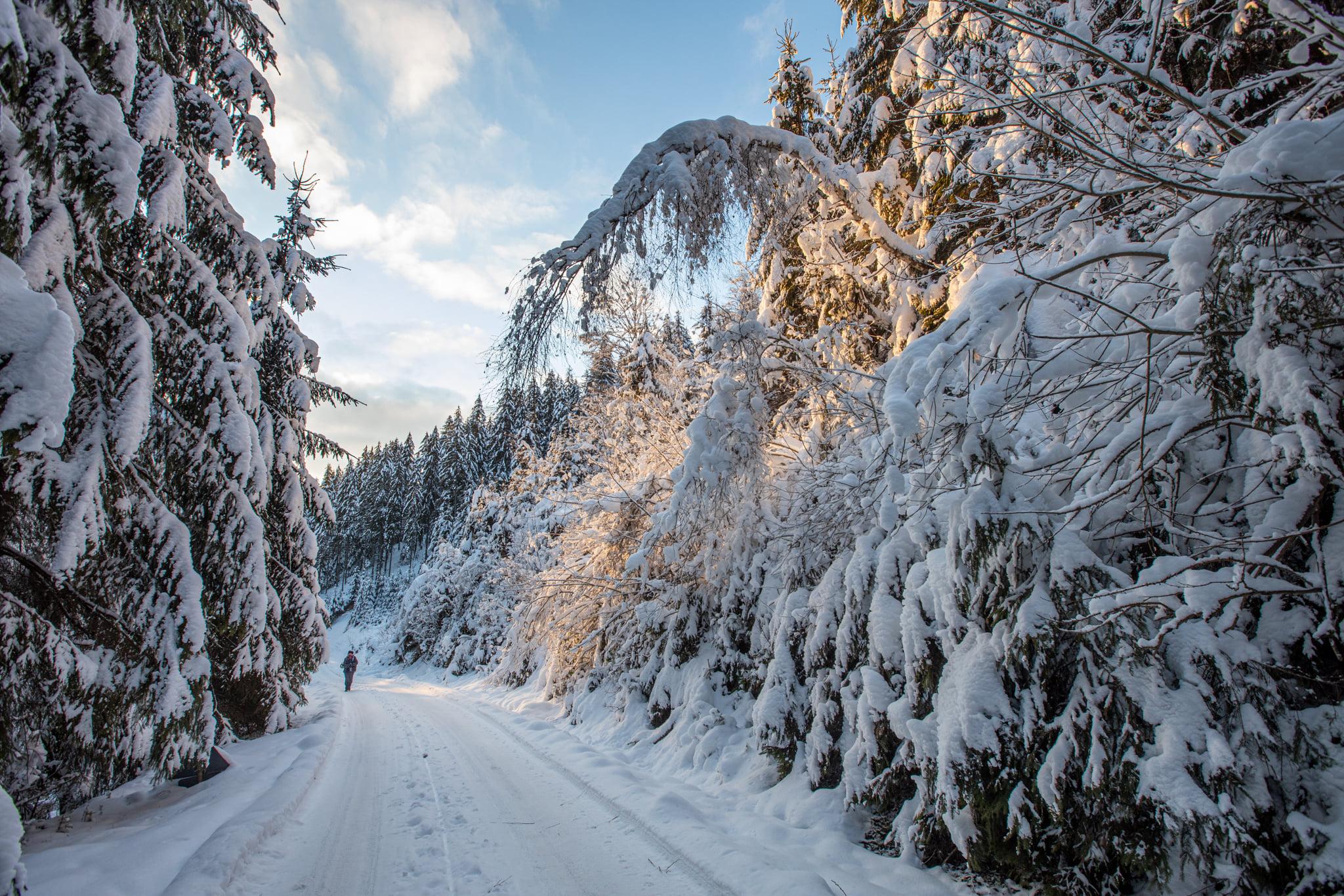 Drumul merge parael cu o vale - Marius Turc