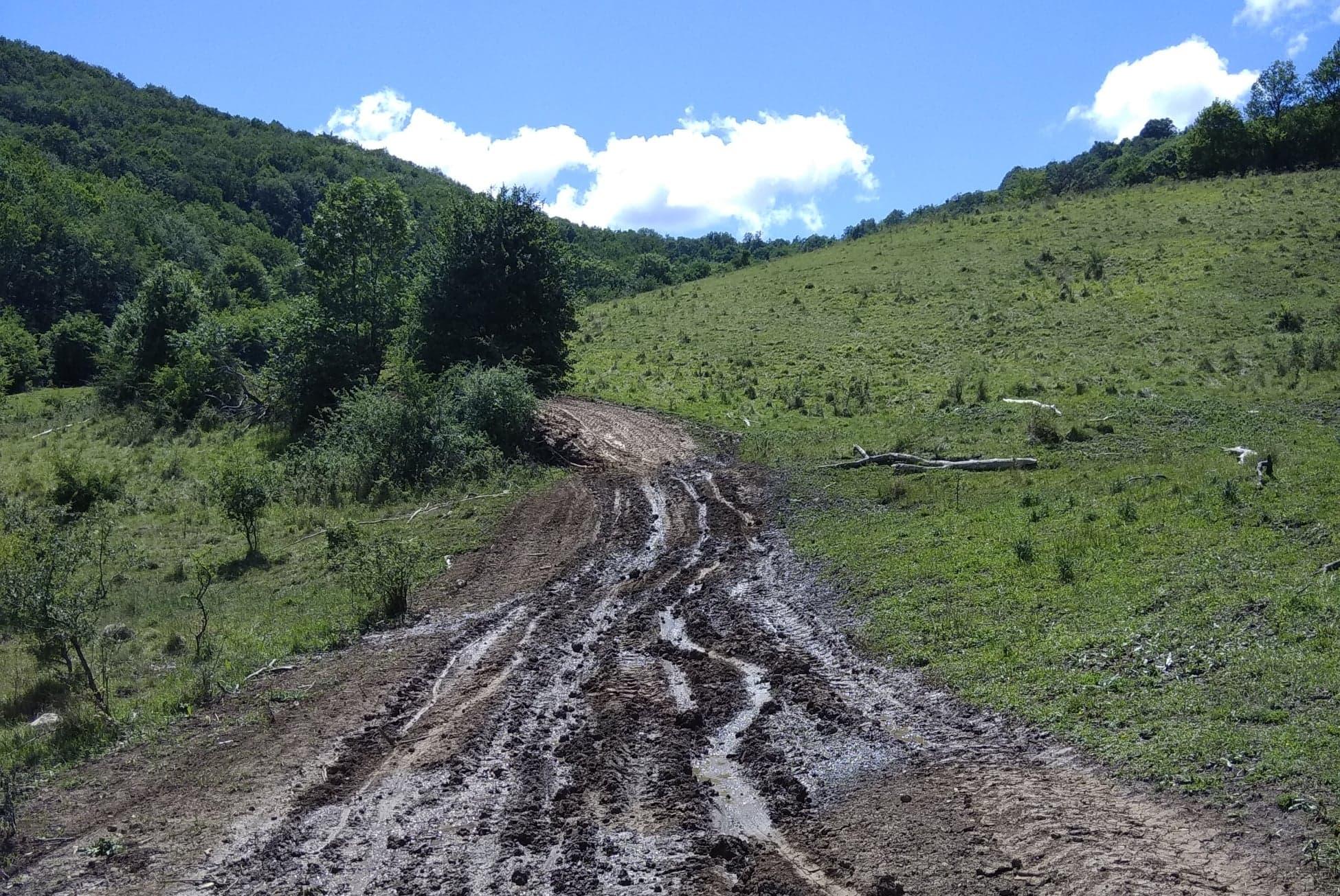Drumul spre Poiana Galdei - Manu Muntomanu