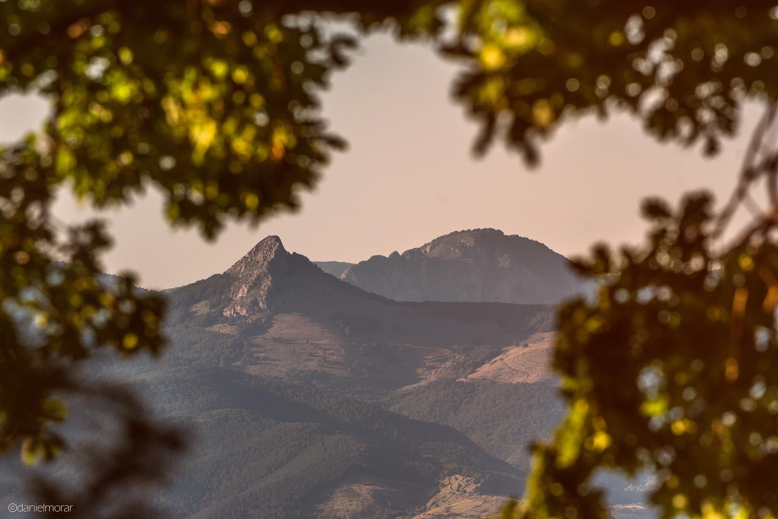 Piatra Cetii văzută de pe Dealul Mamut