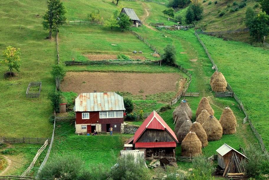 Gospodărie în muntele Cacovei - Marian Poara - Banda Rosie