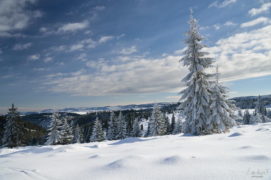 Iarna la Crucea Iancului - Lucian Satmarean