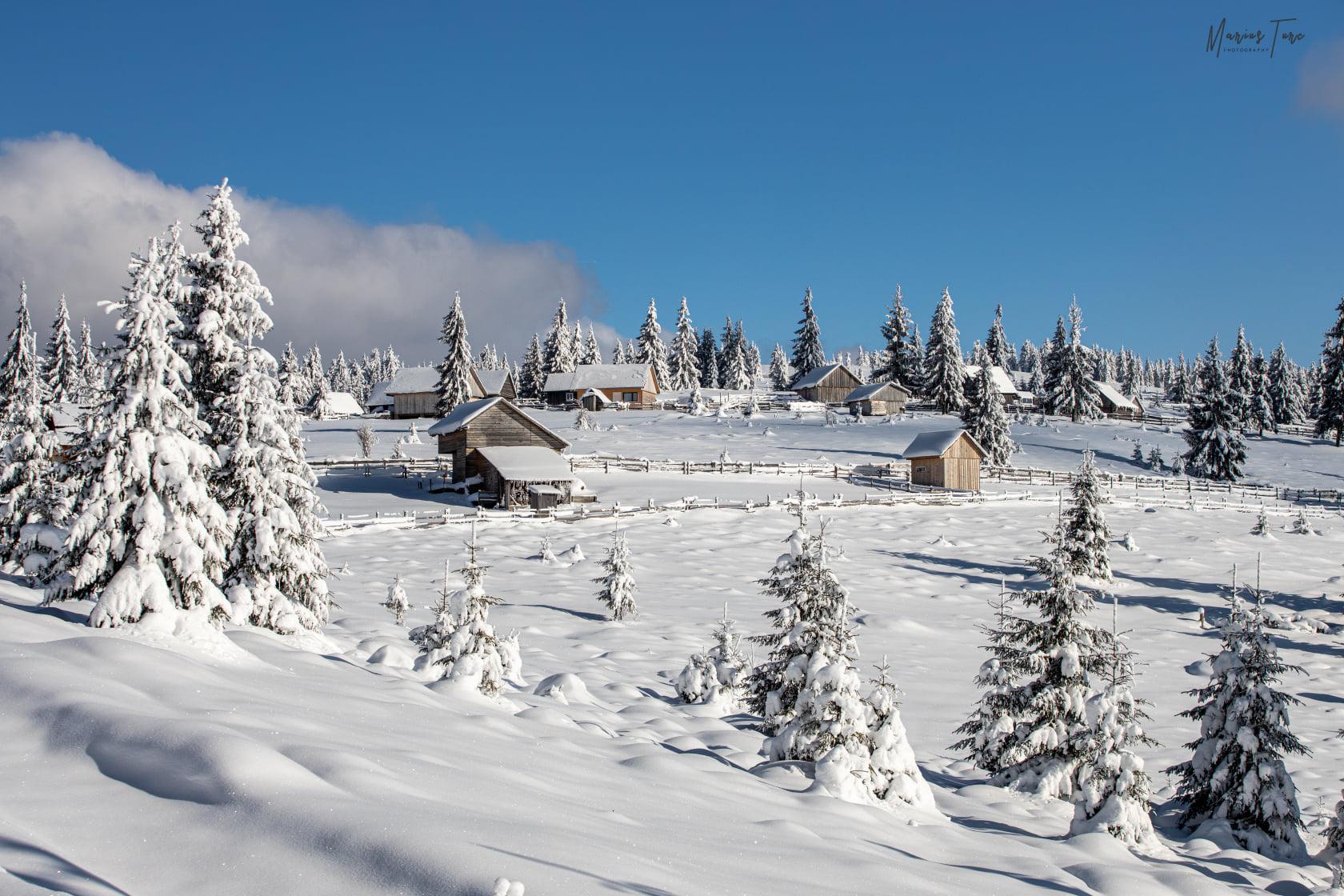 Iarna pe dealurile motilor - Marius Turc