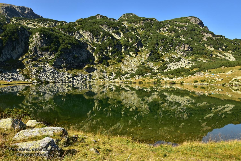 lacul galcescu reflexii