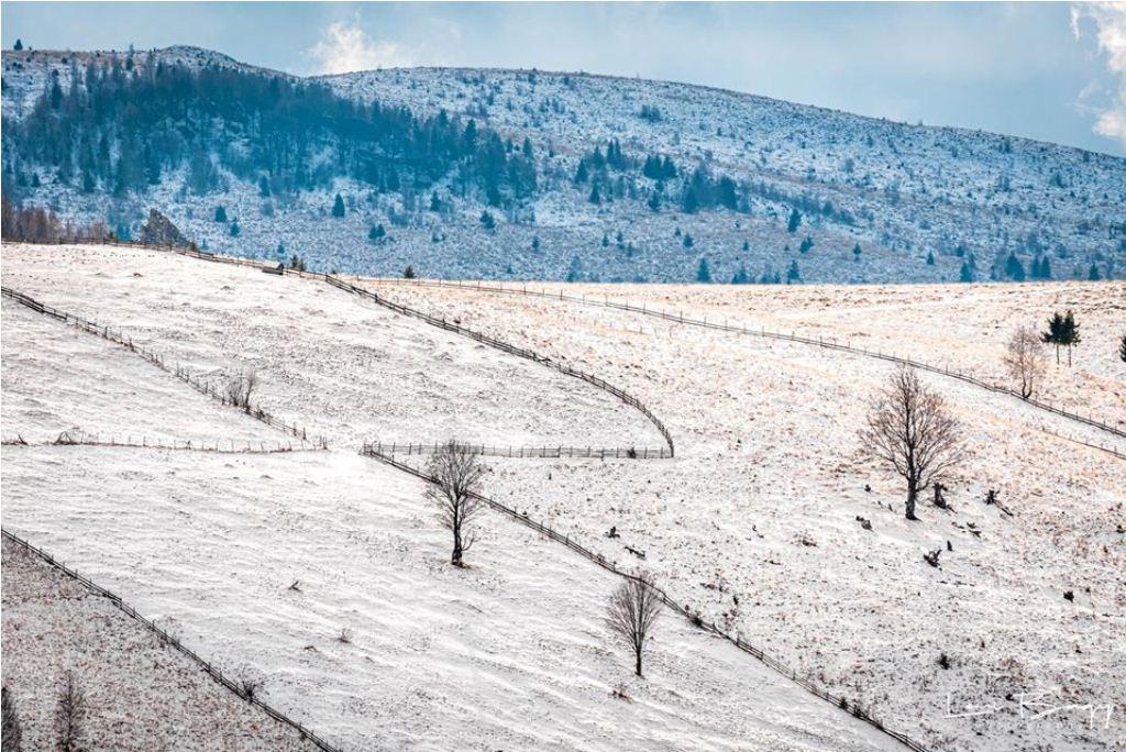 inceput de iarna - Levi Bagy Photography