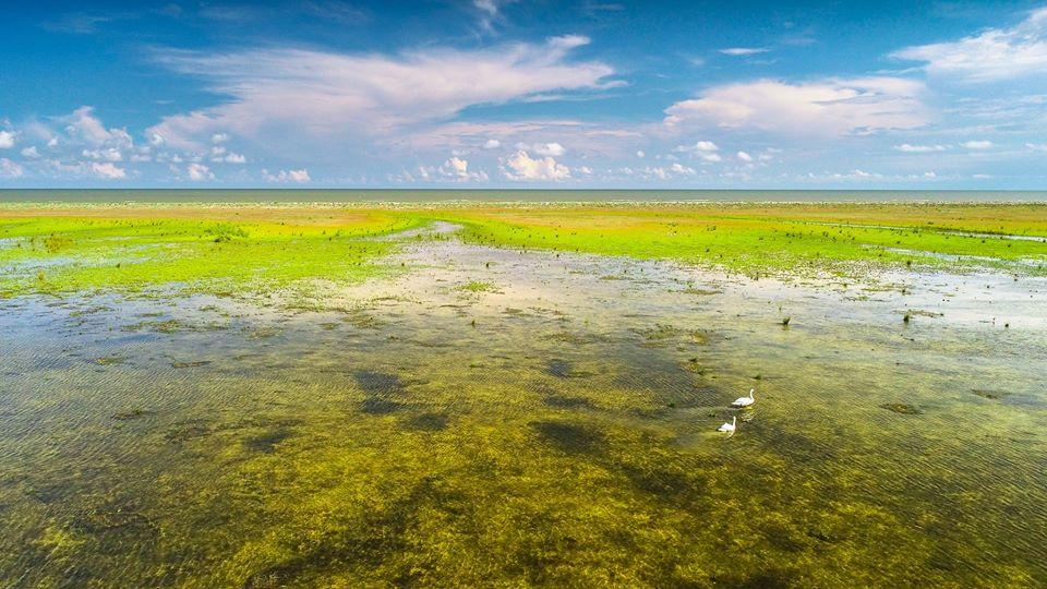Insula Sacalin - Dragos Asaftei
