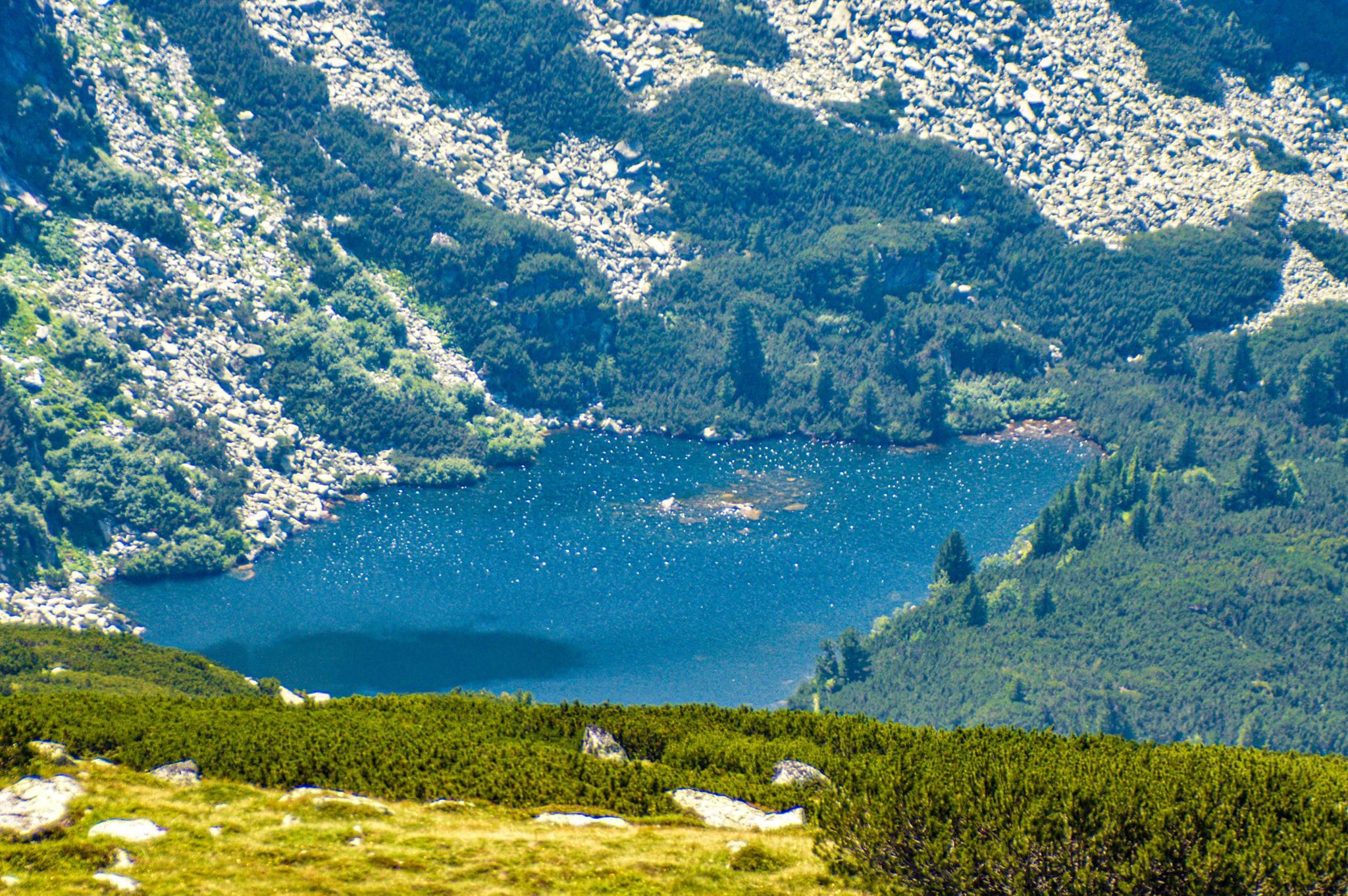 Lacul Gemenele - Nicu Ardeiu
