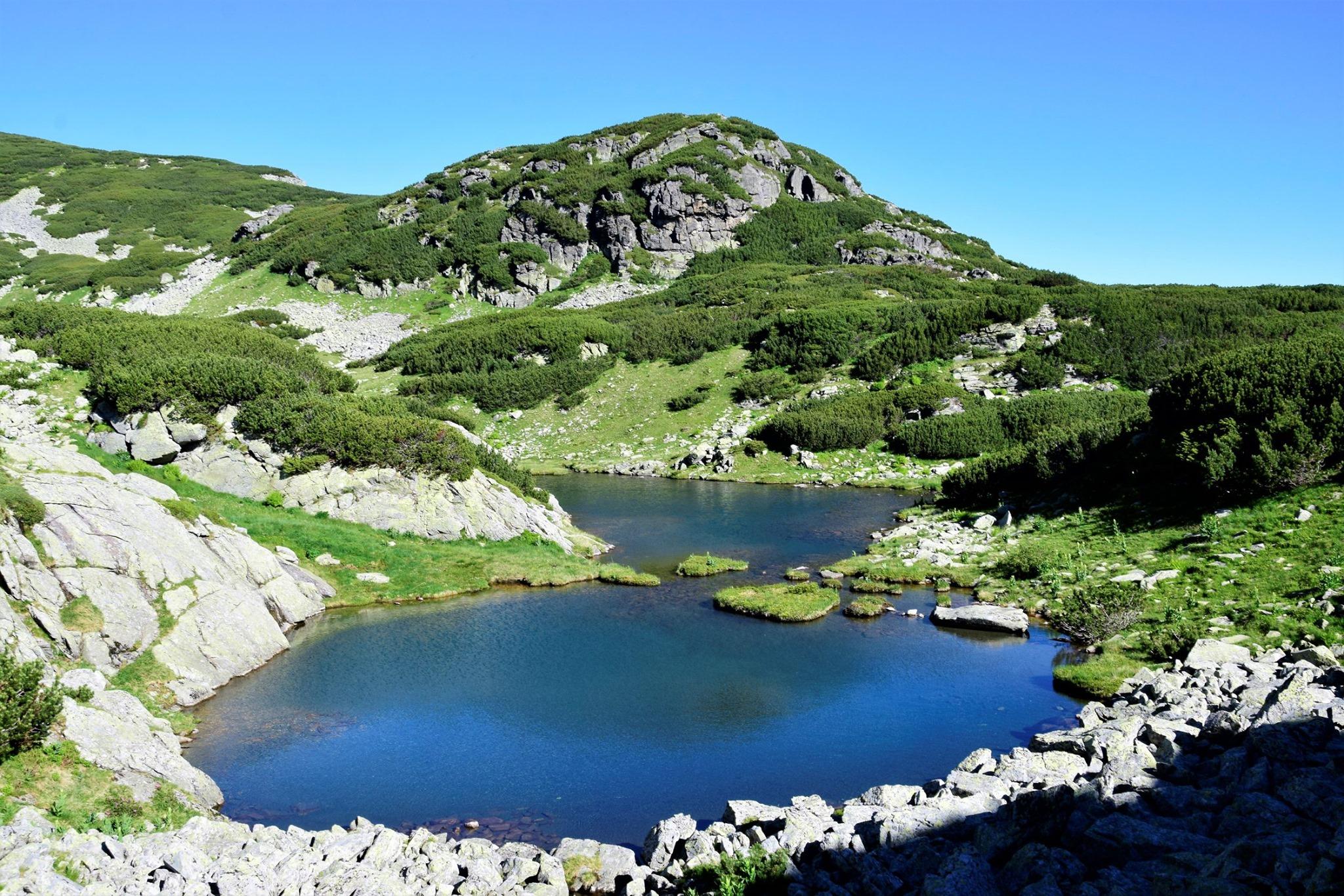 Lacul Păsări - Radu Munteanu