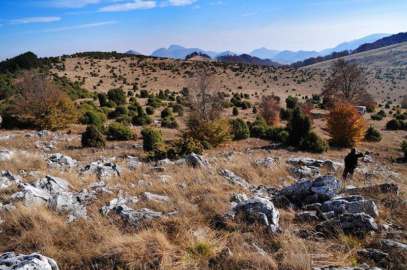 Lapiezuri si ienuperi pe platoul Ciumerna - Daniel Morar