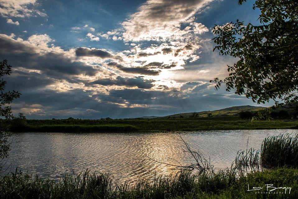 Malul Muresului - Levi Bagy Photography