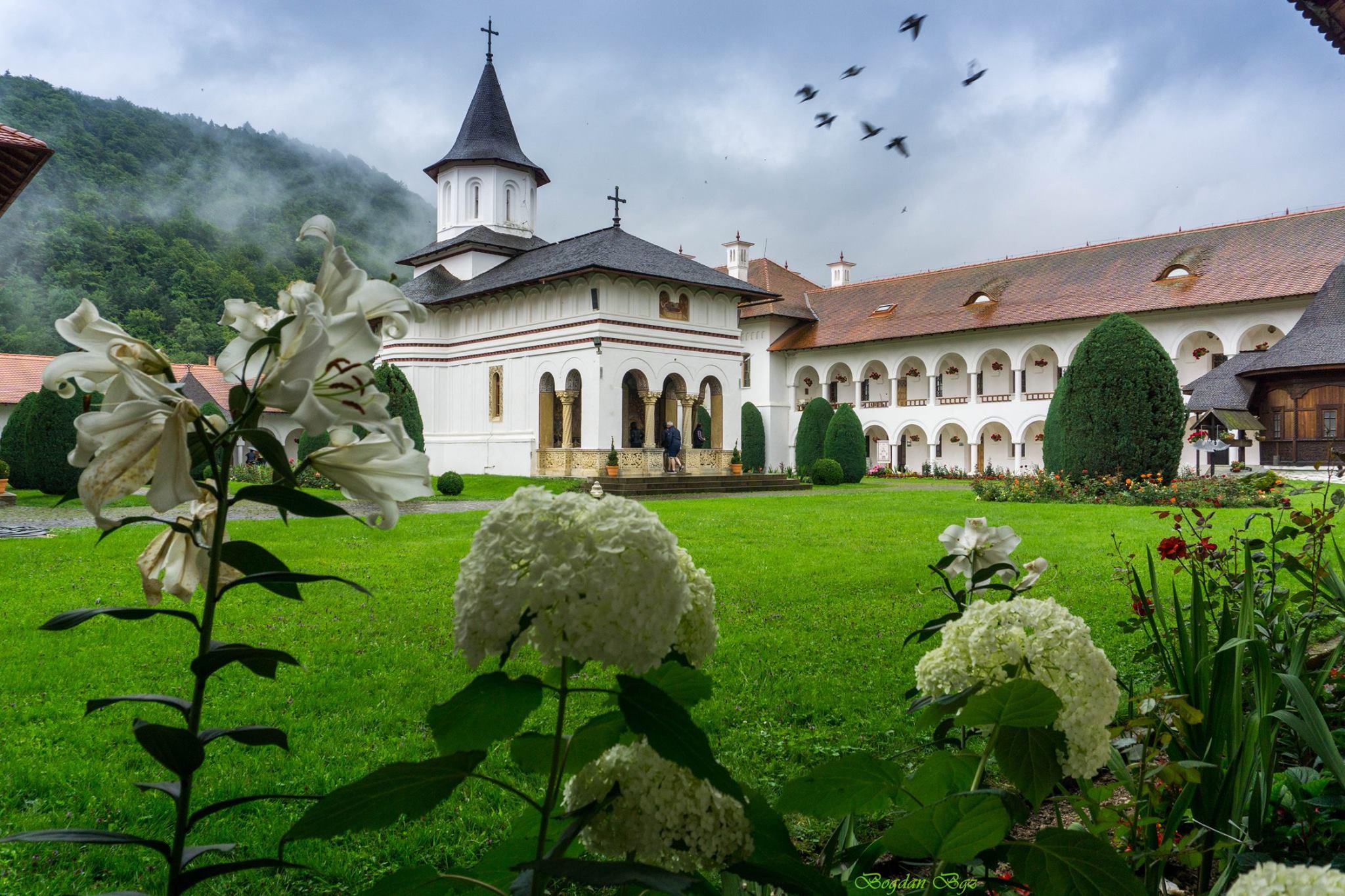 Manastirea Brancoveanu - Bogdan Sarmoiu