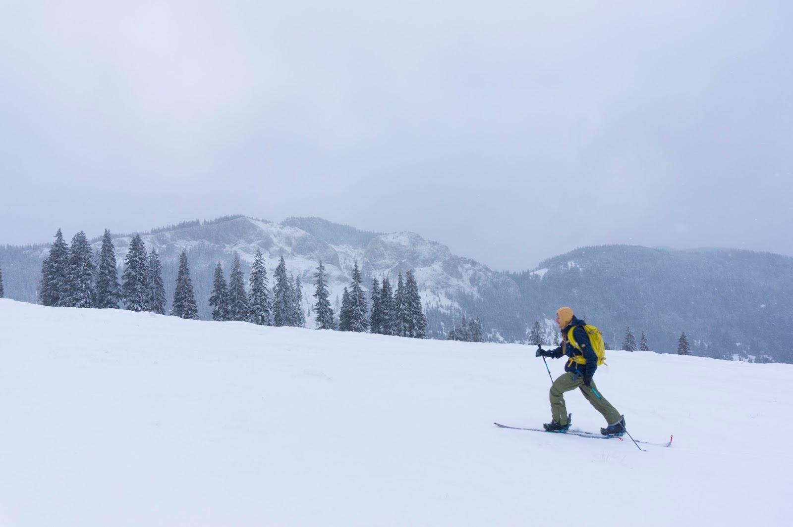 Mersul pe schi de tura  - Alina Cirja - Banda Rosie