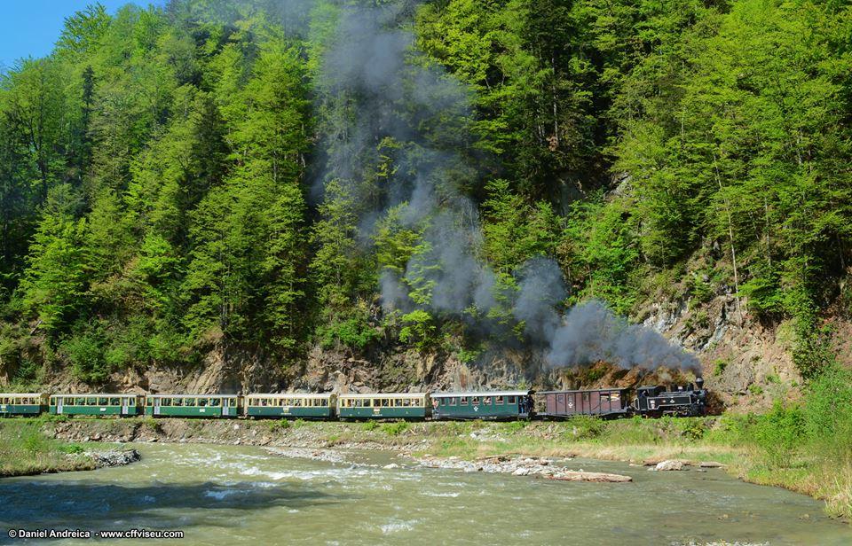 Mocanita - Valea Vaserului - trinul cu aburi
