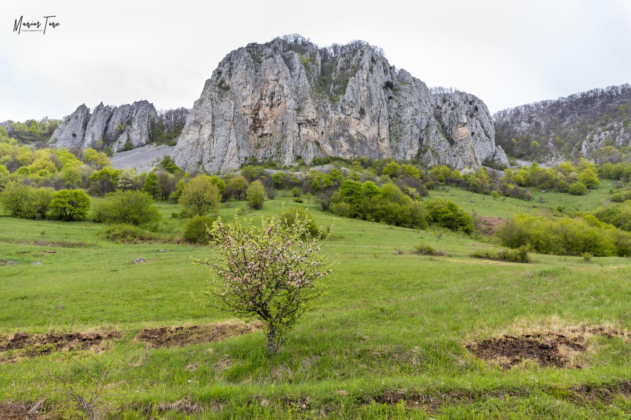 Muntele Vulcan  - Marius Turc