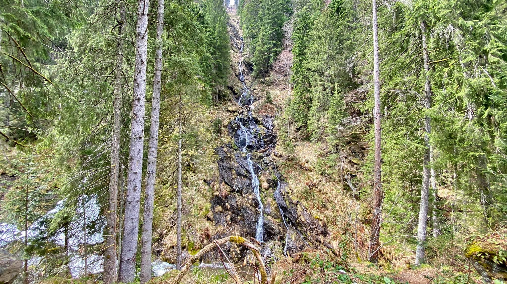 O cascada care cade in Valea Sambetei - Marius Popa