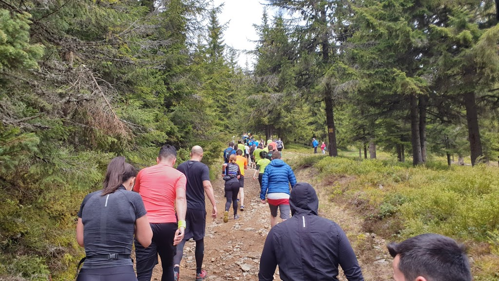 Traseu msg Maraton Apuseni