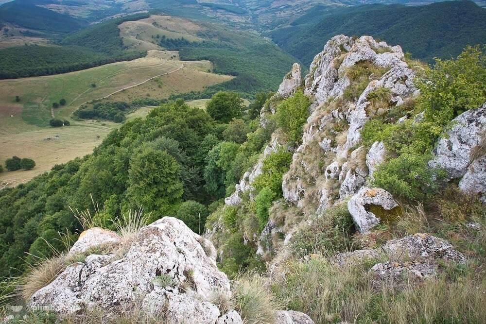 Pe Piatra Craivii - Cârtița Plimbăreață