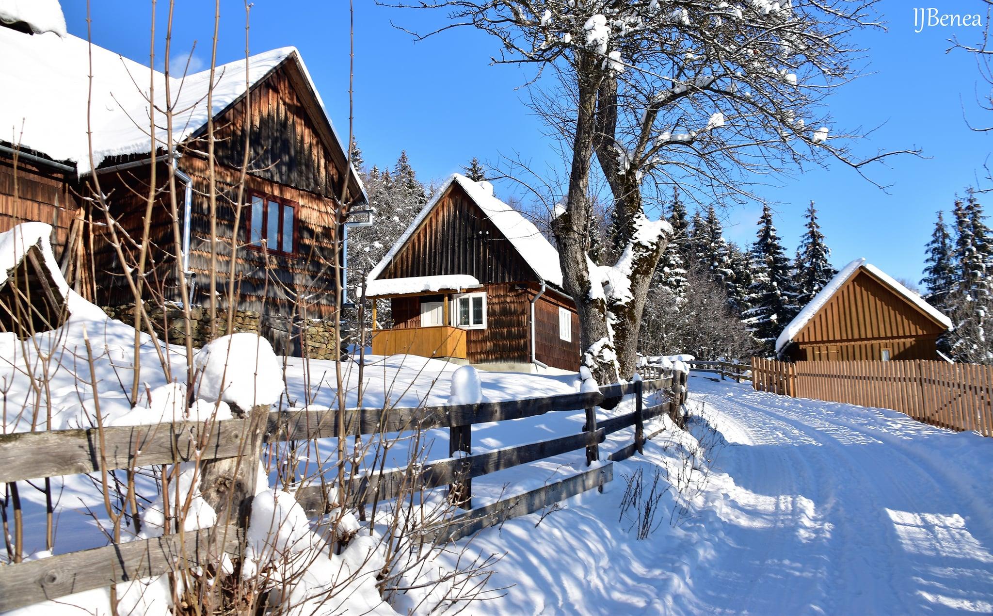 Pe ulita satului Trifesti - Ioan Benea Jurca