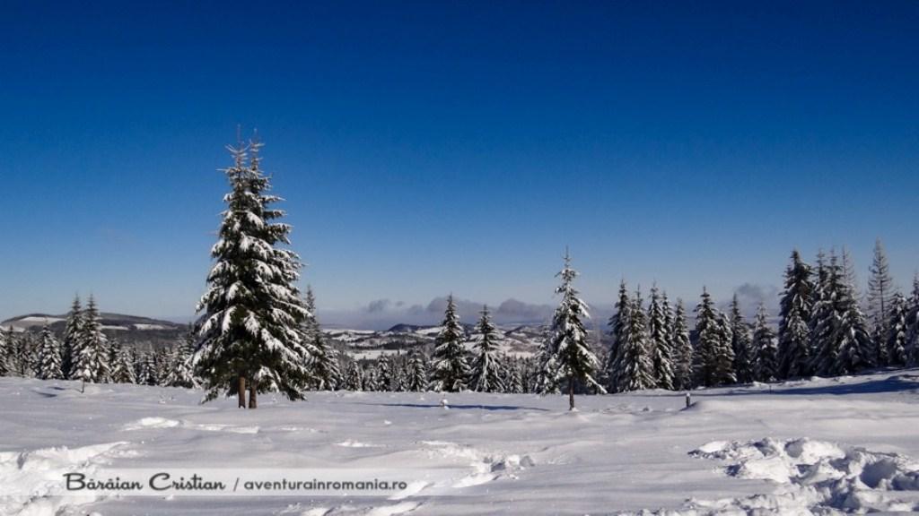 Platou Muntele Mare - Aventura in Romania